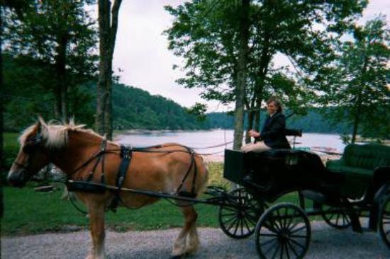 Pembroke, VA: wedding carriage
