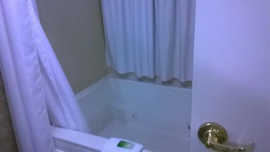 Holiday Inn Express Hotel & Suites Erie (Summit Township) : Very large and comfy tub/jacuzi.