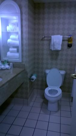 Holiday Inn Express Hotel & Suites Erie (Summit Township) : Nice bathroom