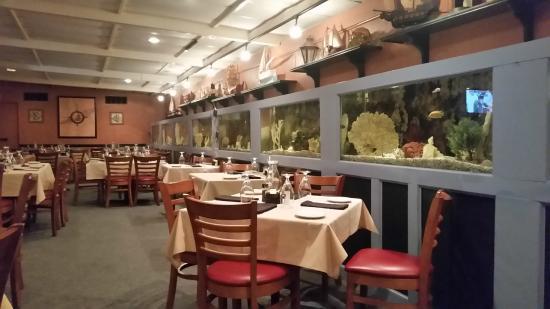 The Fish Monger : Fresh-water Aquariums