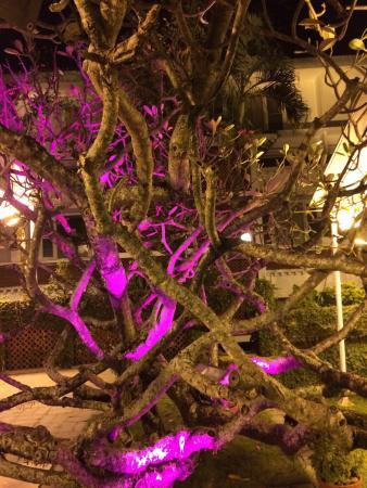 FortCochin,Seafood Restaurant,Casino hotel: photo1.jpg
