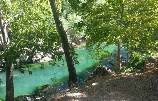 VIGOTOUR Day Tours: vanaf de weg langs de rivier; groen water.