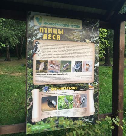 Park Troparevo