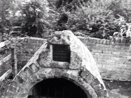 Holywell, UK: Great historic walks