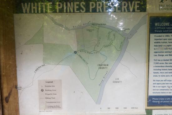 White Pines Nature Preserve