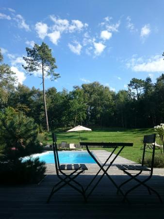 Villa Vent Couvert : Vue de la chambre Sherwood accès direct jardin