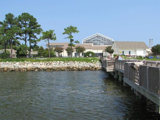 The museum from the pier - Picture of North Carolina ...