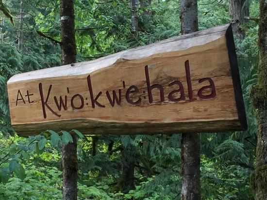 At Kw'o:kw'e:hala Eco Retreat照片