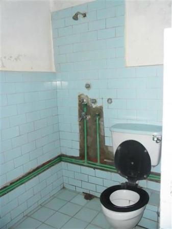 Hotel Discovery Inn: toilet & shower room