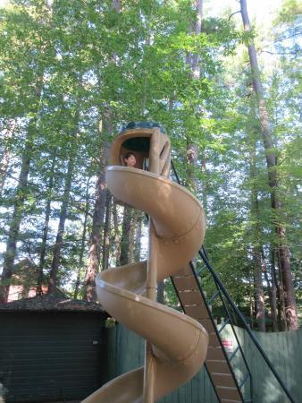 Prospect Lake Park: playground