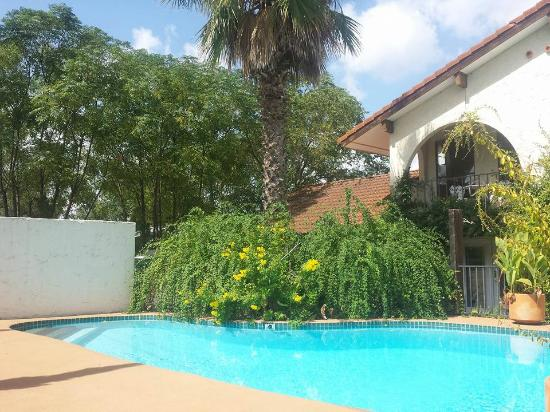 Lakehouse Bed & Breakfast: the villa pool