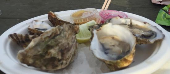 The Jolly Oyster: photo0.jpg