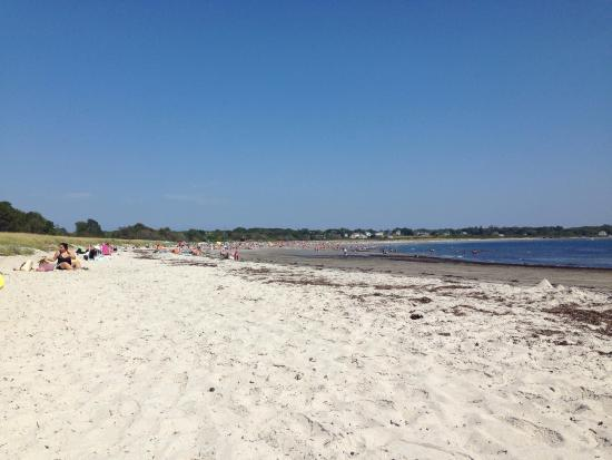 Crescent Beach State Park: photo0.jpg