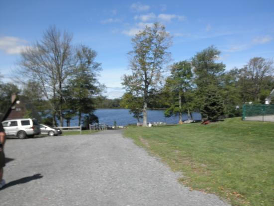 Pine Grove Cottages: Parking lot by poolside cottages