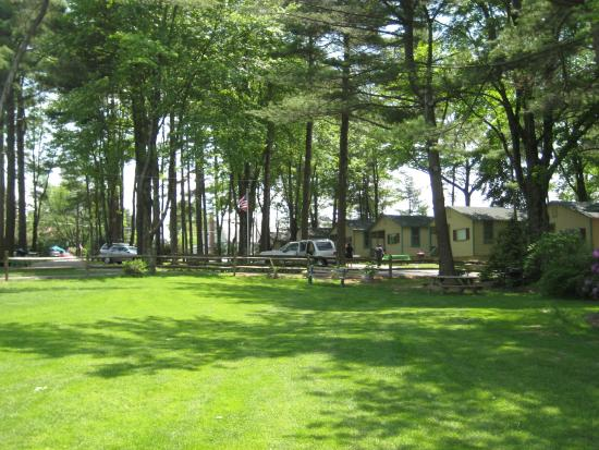 Pine Grove Cottages: Lots of places for lawn games