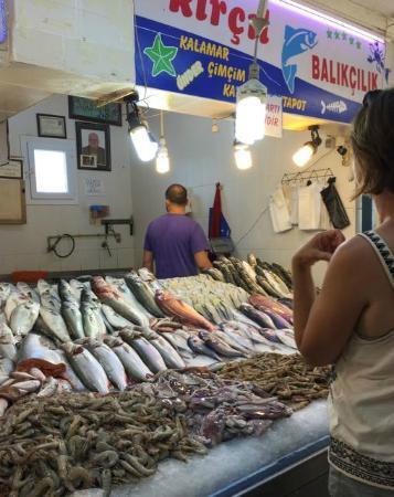 Toros Restaurant: Choosing fresh seafood at the market next to Toros