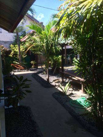 Pondok Lita : The view of the garden from the front door.