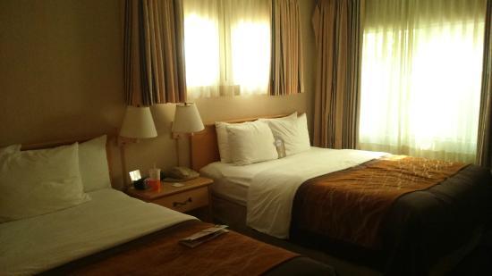 Comfort Inn Santa Monica: our room