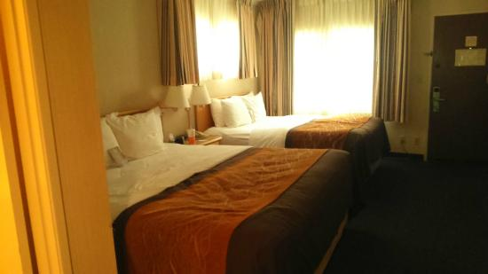 Comfort Inn Santa Monica: big beds