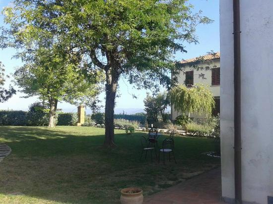 Agriturismo Spazzavento: Spazzavento's front lawn