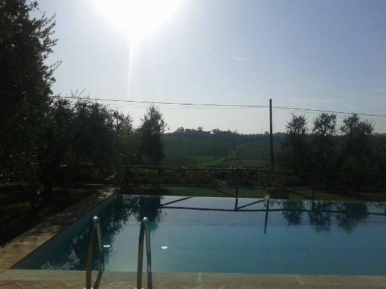 Agriturismo Spazzavento: pool overlooking vineyards