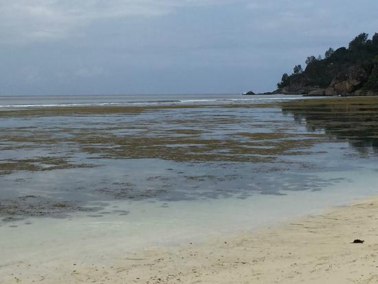 Baie Lazare, Seychelles: PLage de l'hôtel Kempinski