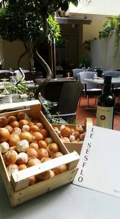 Le Sesflo : cette semaine du 8.09  ***Arrivage rare pour les fins gourmets de ce champignon hors du commun!!