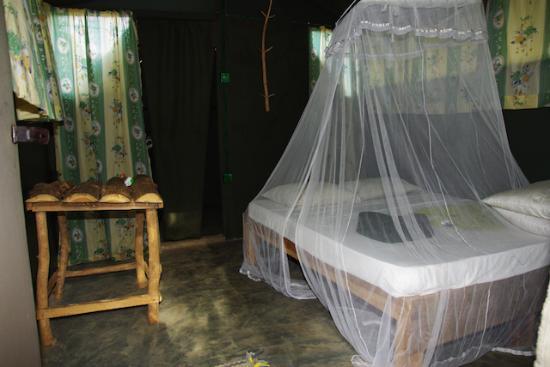 l 39 int rieur d 39 une tente photo de gangadhara eco village sri lanka kuda oya tripadvisor. Black Bedroom Furniture Sets. Home Design Ideas
