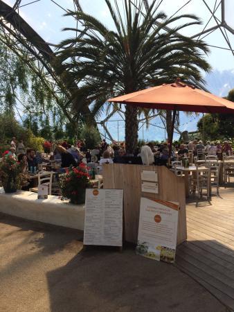 Med Terrace Restaurant: photo0.jpg
