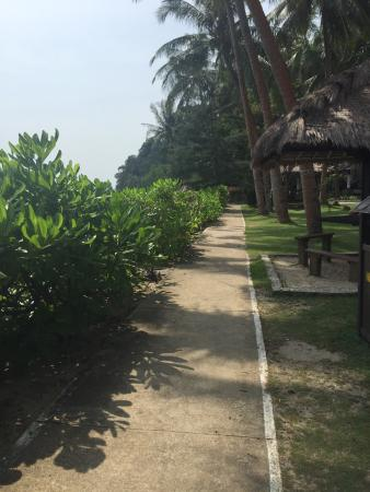 Turi Beach Resort Photo