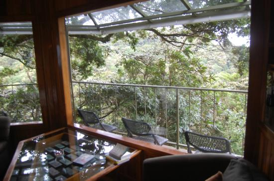 Hidden Canopy Treehouses Boutique Hotel: Neverland Room
