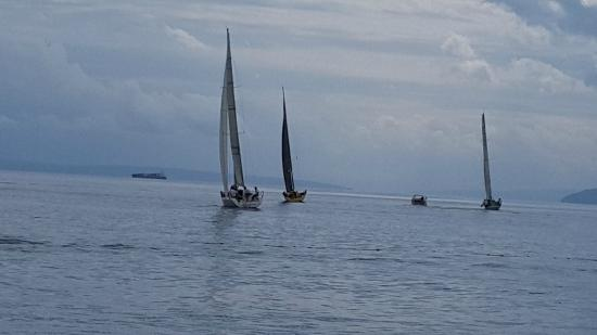 Grand Hotel Adriatic: Regatta...