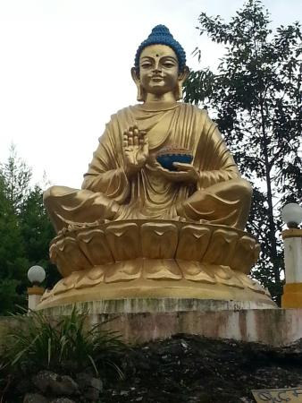 lord budha statue picture of lord buddha statue park kalimpong