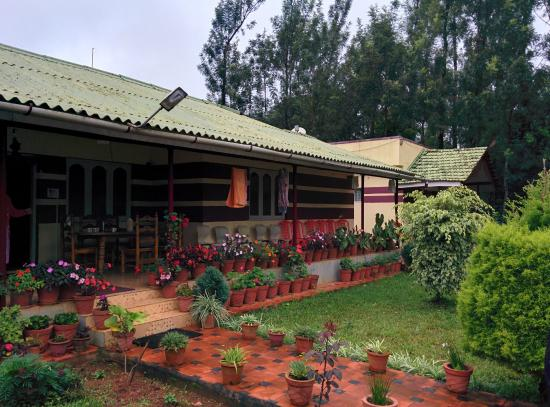 Red Berry Homestay: Ambience
