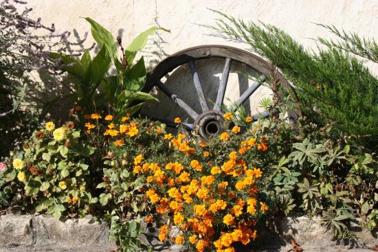 Hôtel du Moulin de la Brevette : jardin fleuri