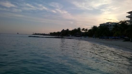Bilde fra Grand Oasis Palm