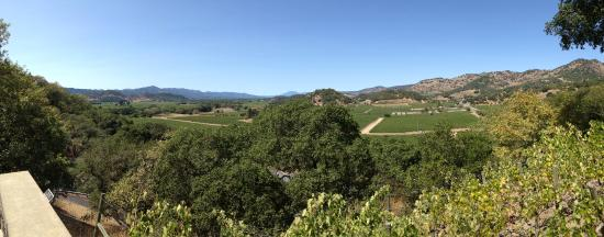 Napa Winery Shuttle: The view from Silverado Vineyards