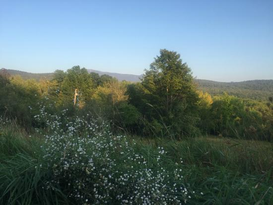 Underhill, VT: The View from your Patio