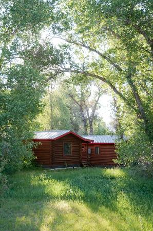 Teton Valley Cabins: Little Cabin in the Woods