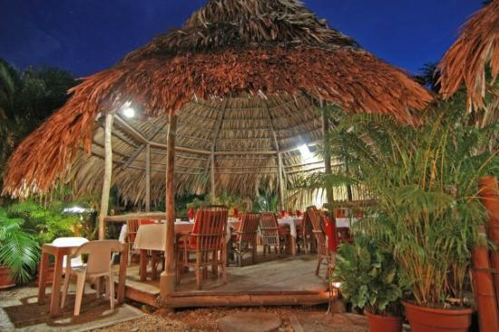 Kariwak Village Holistic Haven and Hotel: Dining at Kariwak Village in our open air restaurant
