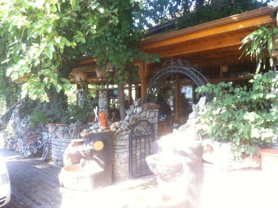 Akcapinar Tostcusu: akpınar tostçusu  giriş