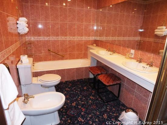 Argyll Arms Hotel: Bathroom / shower room