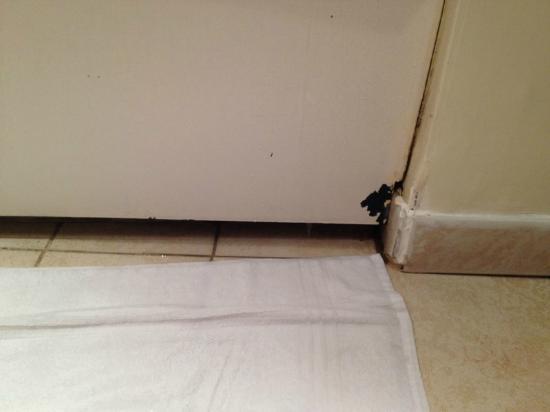 L 39 eau coule dans la salle de bains picture of mercure for Salle de bain geneve