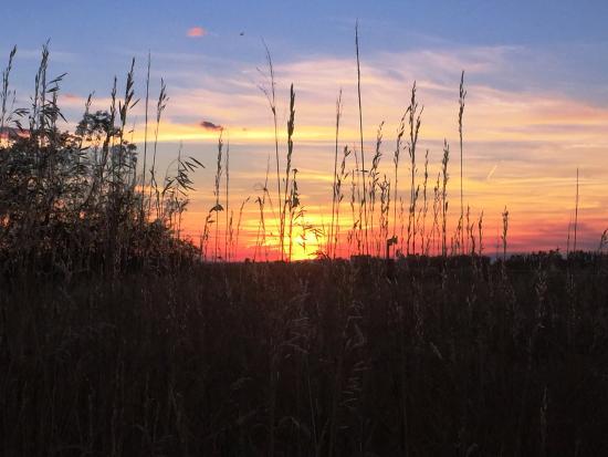 Fox Hollow Inn: sunset behind the Fox Hollow