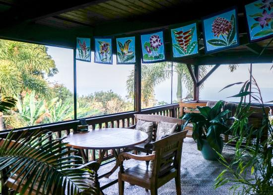 Aloha Guest House: View from the patio