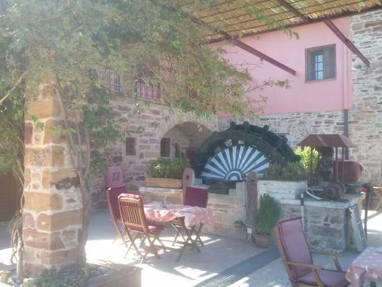 Mouzaliko Hotel: Η αυλή