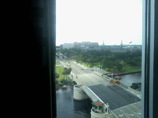Aloft Tampa Downtown: Kenedey Bridge.
