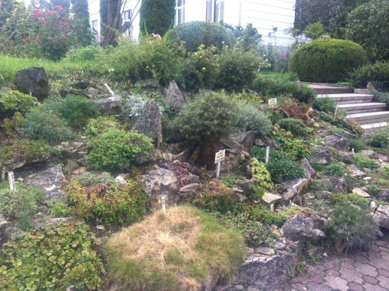 Botanical Garden: Plants