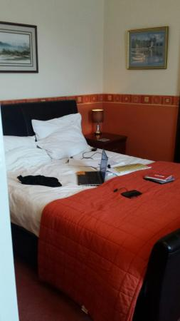 The Edwardian Lodge Guest House: Clean, comfortable and convenient