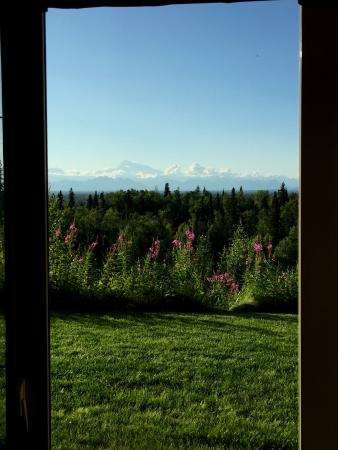 Talkeetna Alaskan Lodge: Denali Mountain View from Room
